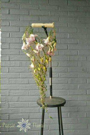 Flower Factor Freesia